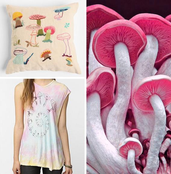 Aaryn West - Trends: Magic Mushrooms