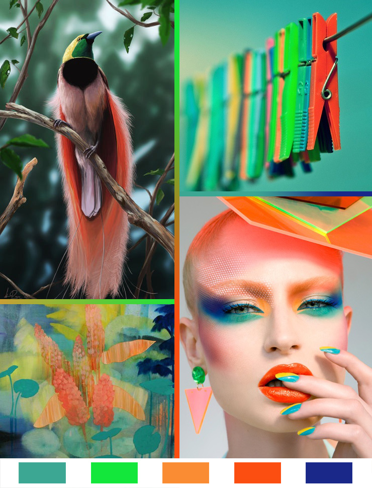 Bird of Paradise: Monday Color Mood