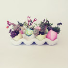 Easter Egg Succulent Planters by Aaryn West